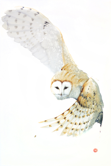 , 'Barn Owl,' 2016, Cricket Fine Art