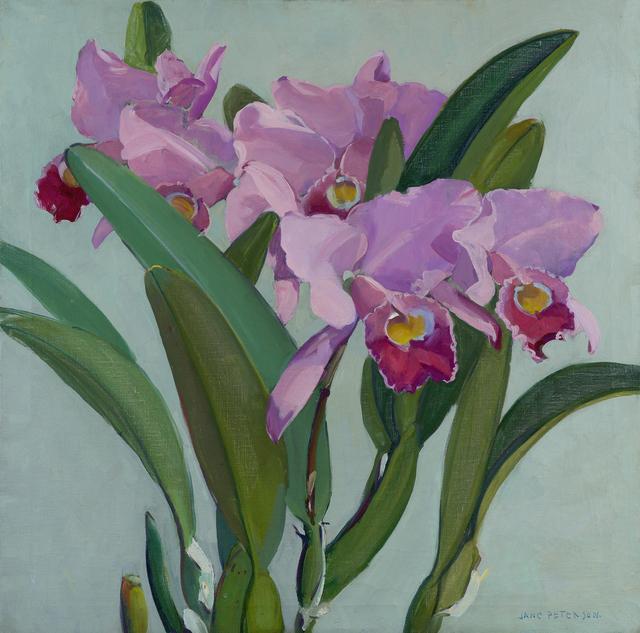, 'Cattleya Orchids,' Add Artwork year, Debra Force Fine Art