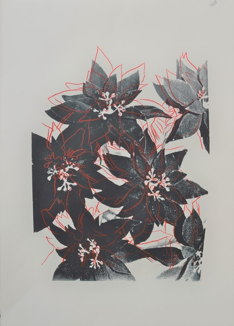 Andy Warhol, 'Poinsettias', ca. 1983, Long-Sharp Gallery