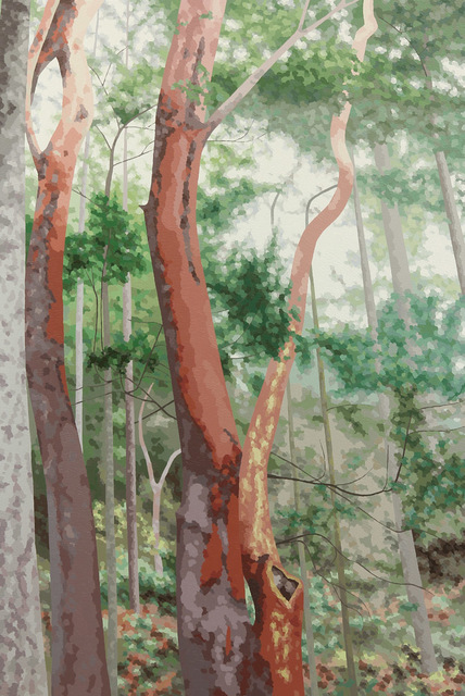 Elaine Coombs, 'Hold the Course', 2013, J GO Gallery