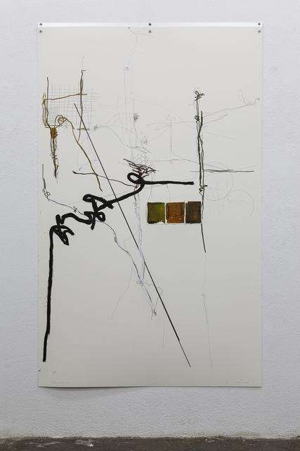 ", '""Herbarium (Madrid)"" nº 9,' 2014, Galería Juana de Aizpuru"