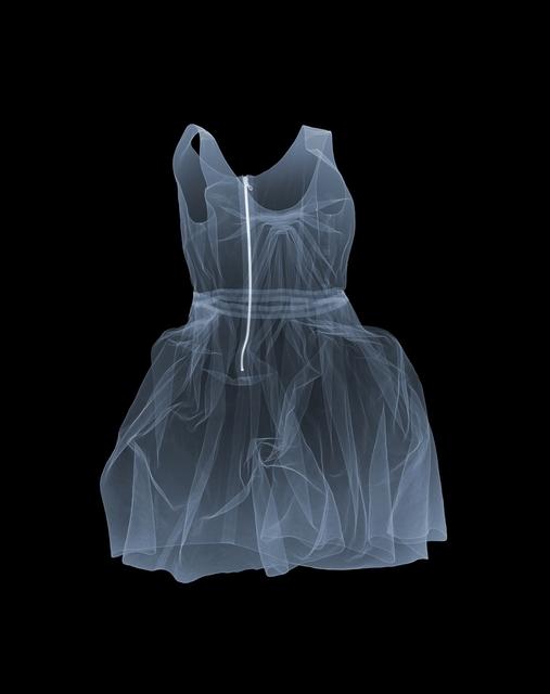 , 'Lanvin Dress,' 2011, Bluerider ART