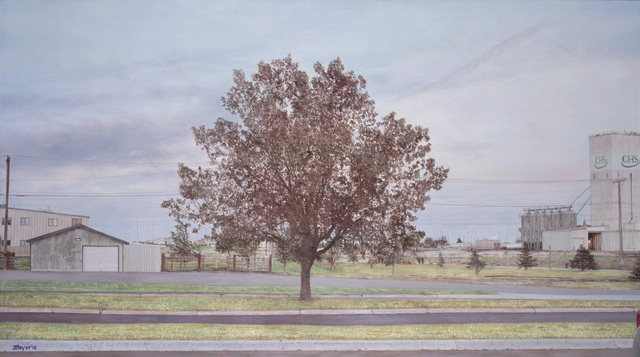 , 'Montana Parking Lot Tree,' 2013, Moskowitz Bayse
