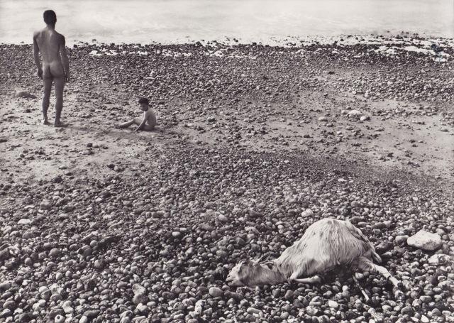 , 'Ulysse (vintage),' 1954, Galerie Nathalie Obadia
