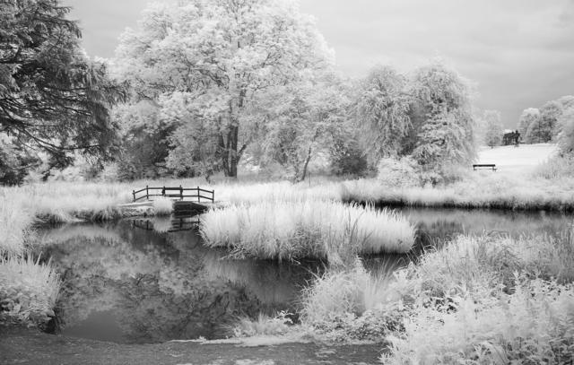 , 'Harpenden Pond,' , Thurmanovich Gallery