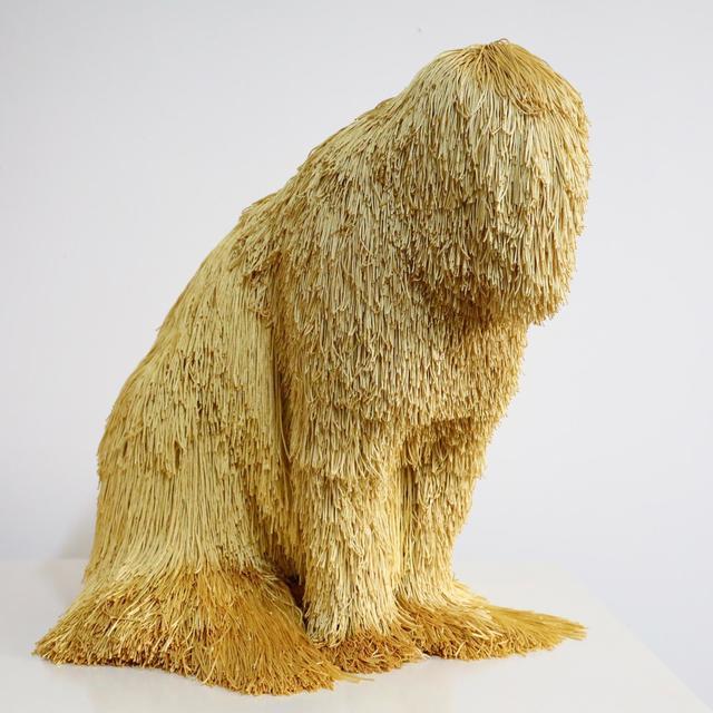 , 'gold tomcat,' 2019, Martin Browne Contemporary