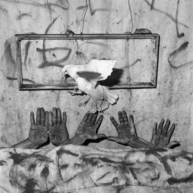 , 'Five hands,' 2010, CHRISTOPHE GUYE GALERIE