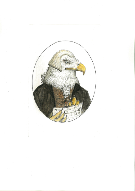 , 'Bald Eagle, USA,' 2016, Cavalier Galleries
