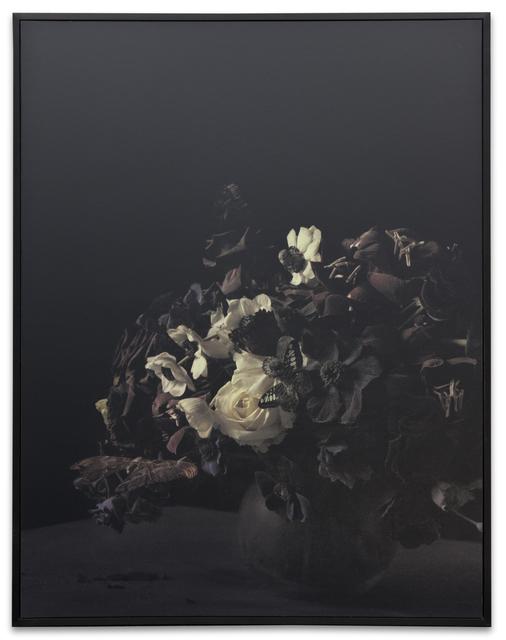 Ori Gersht, 'Blow Up: Untitled 16', 2007, Kohn Gallery