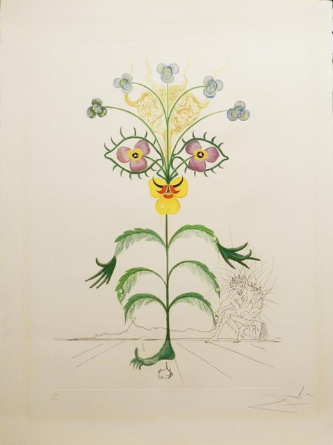 Salvador Dalí, 'Flora Dalinae Viola Cogitans', 1968, Print, Lithograph in color on paper, New River Fine Art