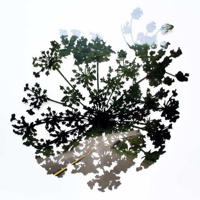 , 'Highway / Queen Anne's Lace No.2,' 2018, parts gallery