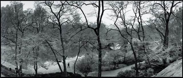, 'The Pond & Gapstow Bridge,' 1992, Aperture Foundation