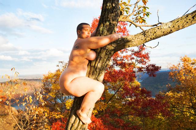 , 'Tree Hugger,' 2017, CFHILL