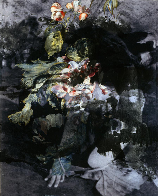 , 'Cannibal Holocaust 2,' 2008, Patricia Low