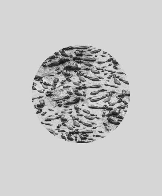, 'Hippo River, ed. 1/5,' 2016, Beatriz Esguerra Art