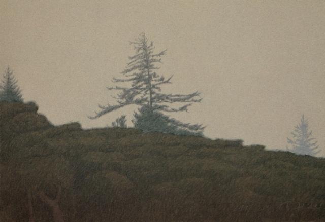 , 'TAMALPAIS IN THE FOG,' 2001, Fitzwater Street Gallery