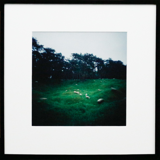 Dianne Bos, 'Vimy Ridge Minefield w. Grazing Sheep, Ed./1', 2015, Newzones
