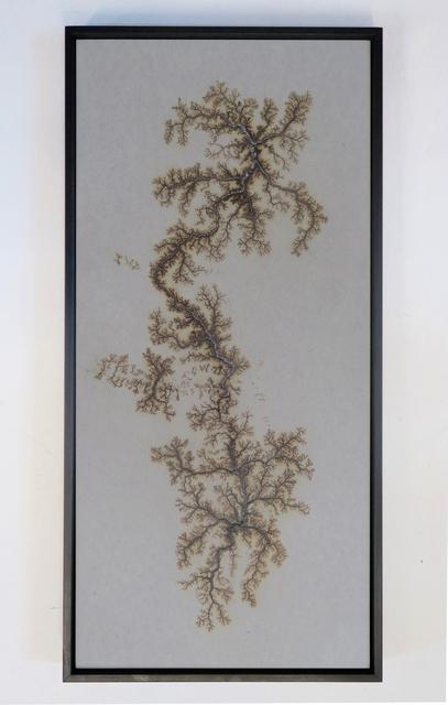, 'Lichtenberg Drawing,' 2016, La Patinoire Royale / Galerie Valerie Bach