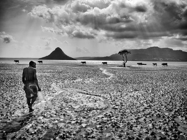 """, 'Série """"Le Sacré"""", Diego Suarez, Madagascar, 2015 - n°2/30,' , Galerie Capazza"""