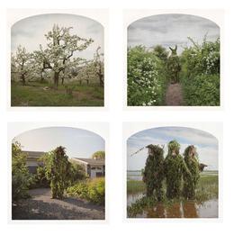 , '(Clockwise, start top left)Forgotten Crowns, On a Flowering Path,The Peaceable Gilliemen,Garden Suburb,' , Yancey Richardson Gallery