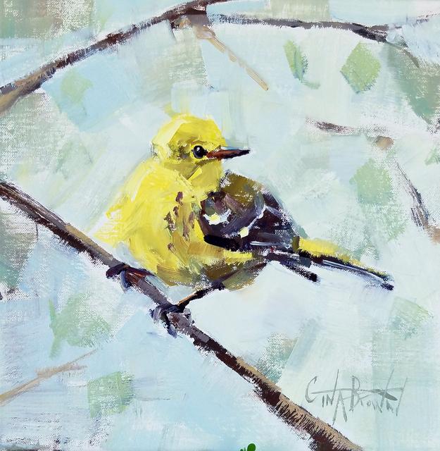 Gina Brown, 'Pine Warbler', 2019, Shain Gallery