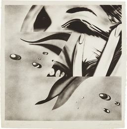 James Rosenquist, 'Zone,' 1972, Phillips: Evening and Day Editions (October 2016)