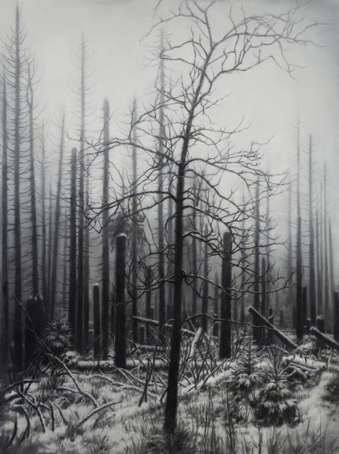 , 'Nemora IV,' 2018, Barnard
