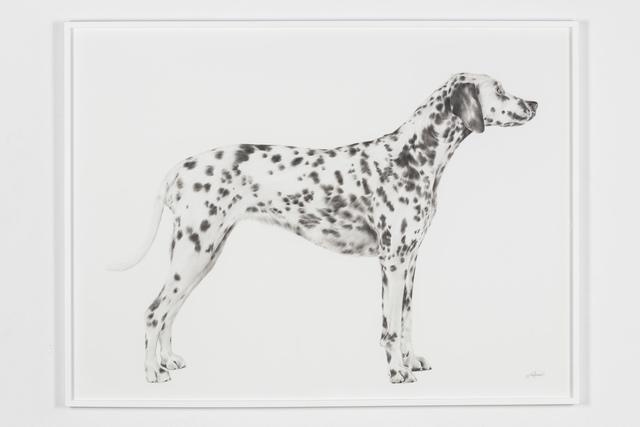 , 'Four,' 2018, Underdogs Gallery