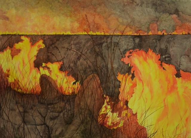 Dircea Mountfort, 'Fogo no Cerrado', Inn Gallery
