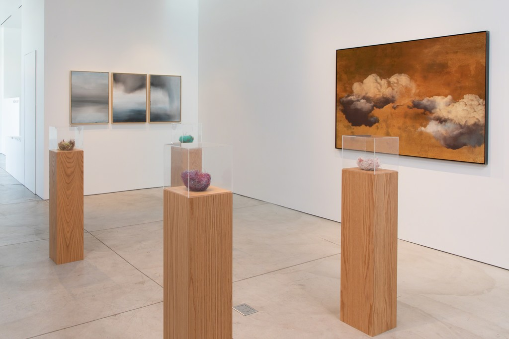 Mother Sky | Marianne Boesky Gallery | Artsy