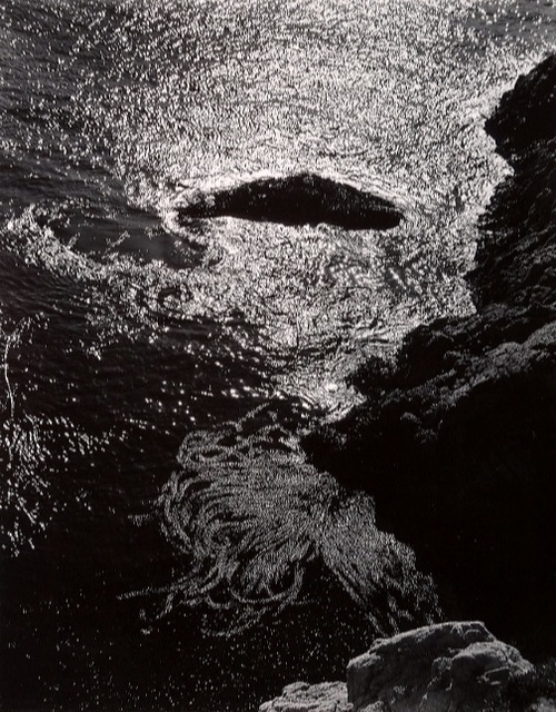 Edward Weston, 'China Cove, Point Lobos', 1940, Afterimage Gallery