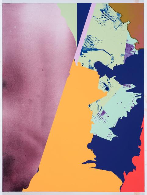 , 'Untitled(Fronds drop matter shadow),' 2017, Galerie Richard