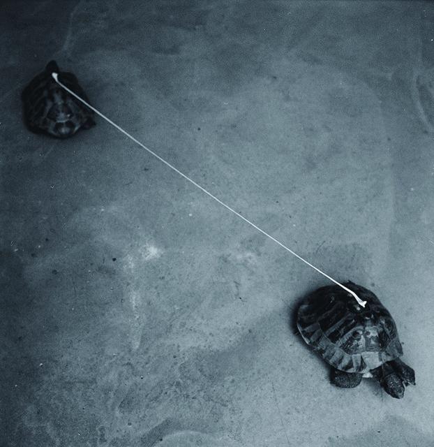 , 'Slow Distance,' 2013, massimodeluca