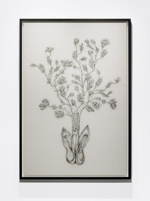 , 'Armillaria Mellea,' 2016, Blindspot Gallery