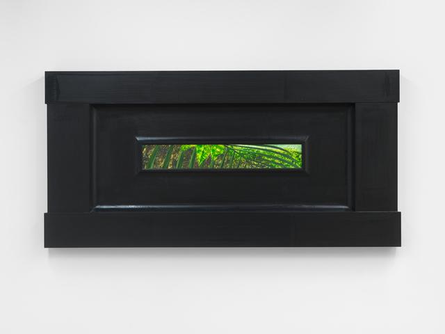 , 'North American Vegetae,' 2007, Magenta Plains