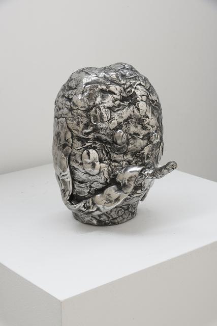 , 'Twig Nose,' 2017, Richard Heller Gallery