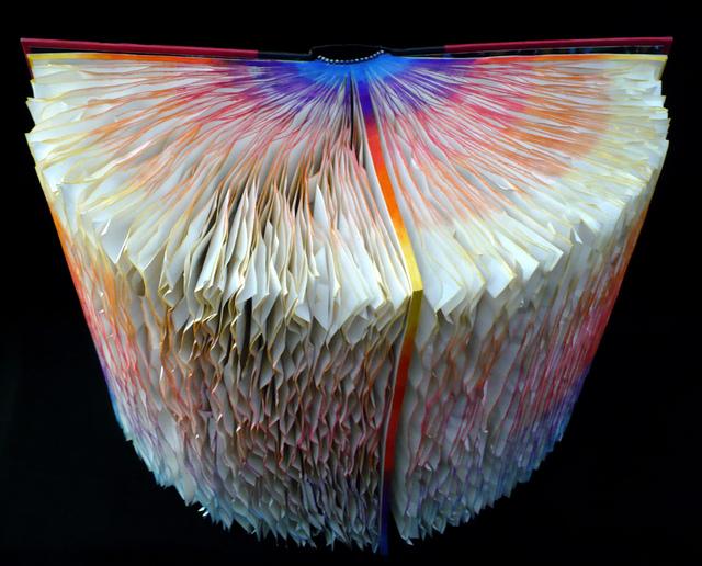 , 'books52Tara,' 2009, Carter Burden Gallery