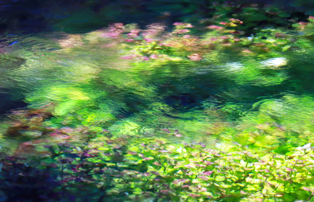 Larry Garmezy, 'Between the Shadows - Abstract / impressionist water photography, waterscape, floral, natural abstraction, Rocky Mountains, in green, pink, and blue', 2019, Archway Gallery