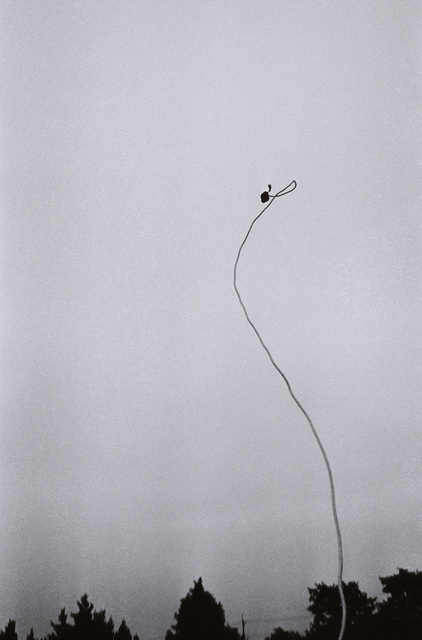, '界律 Space-Order,' 1974, Tomio Koyama Gallery