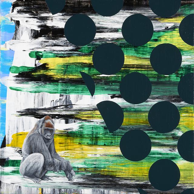 , 'Western Lowland Gorilla,' 2015, Catharine Clark Gallery
