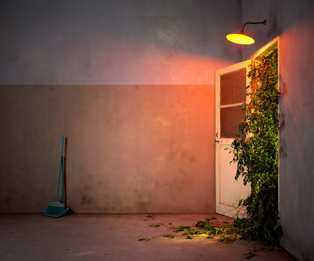 Chen Wei, 'Entrance of the Garden', 2009, Photography, Archival inkjet print, Blindspot Gallery