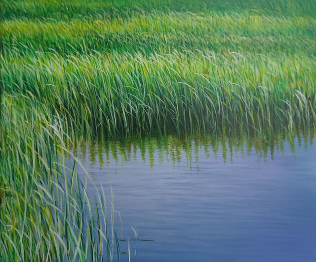 , 'Everglades X,' 2011, Rosenbaum Contemporary