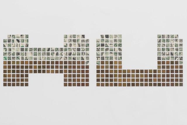 , 'Machu Picchu (detail),' 2013, Sicardi Gallery