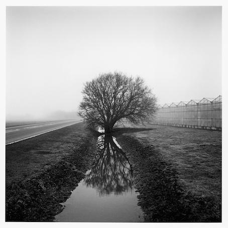 Paul Hart, 'Lynn Way', 2013, The Photographers' Gallery | Print Sales