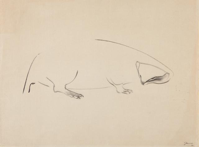 Morris Graves, 'Animal', 1954, Phillips