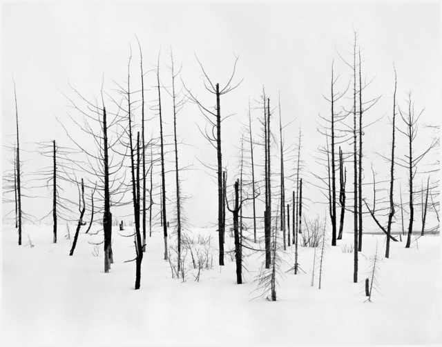 Darren Almond, '69th Parallel 2', 2005, Photography, Gelatin silver print mounted on aluminum in artist's frame, Matthew Marks Gallery