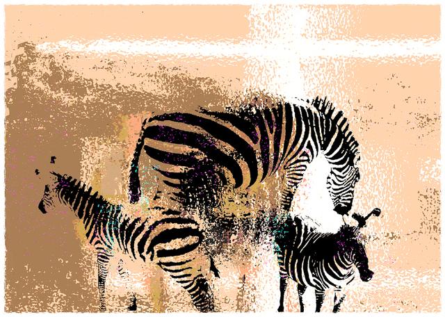 Jane Sklar, 'Zebras', 2020, Photography, Digital Photography Collage, The Galleries at Salmagundi