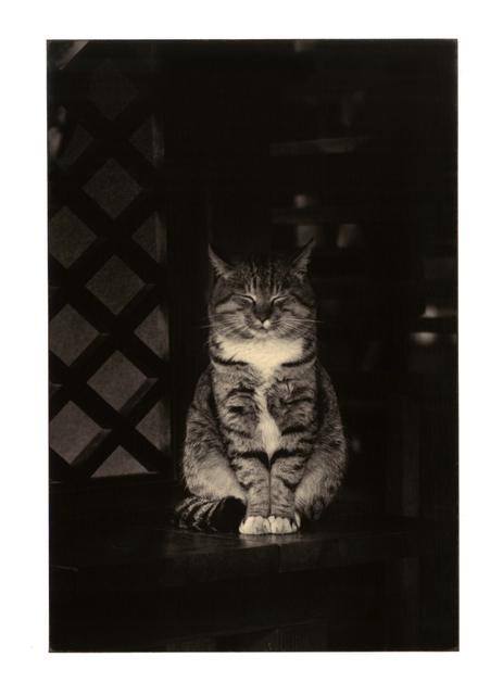 Yamamoto Masao, '0144, from A Box of Ku', 1993, Etherton Gallery