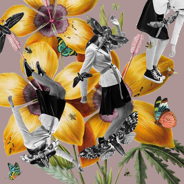 , 'Absurdity ,' 2018, 12 Gallery