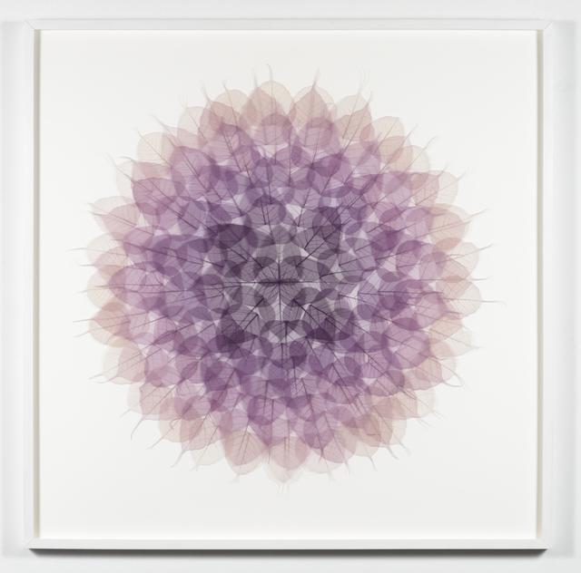 , 'Murasaki Mandala,' 2016, Lora Schlesinger Gallery